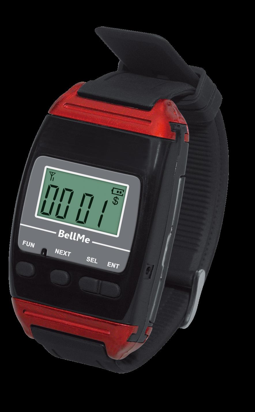 B-650 wrist watch